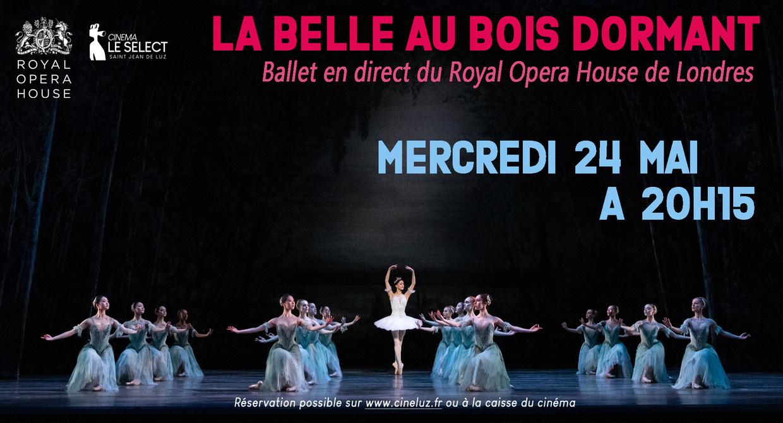 Photo du film La Belle au bois dormant (Royal Opera House)